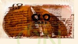 CiaoCarb Linea Alimenti Proteici Proto PlumCake Mandorla 45 g